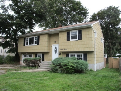 Boonton Town Single Family Home For Sale: 87 Park Ave