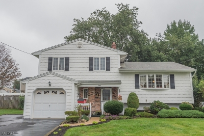 Edison Twp. Single Family Home For Sale: 8 Yolanda Dr