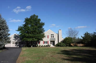 Peapack Gladstone Boro Single Family Home For Sale: 21 Valley View Ave