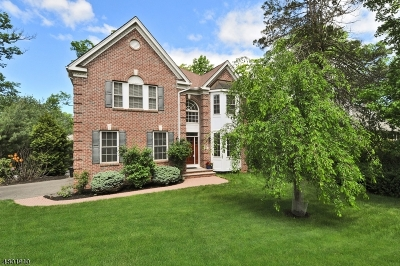 Berkeley Heights Twp. Single Family Home For Sale: 881 Mountain Ave
