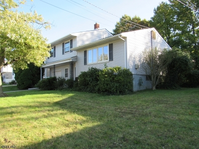 Perth Amboy City Single Family Home For Sale: 647 Franklin Dr