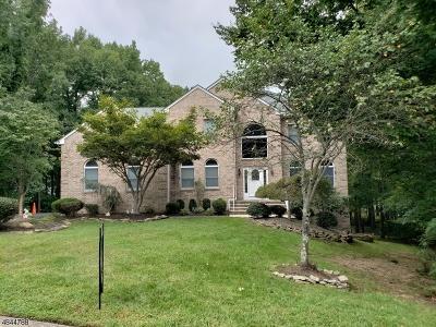 South Brunswick Twp. Single Family Home For Sale: 7 Danton Ct
