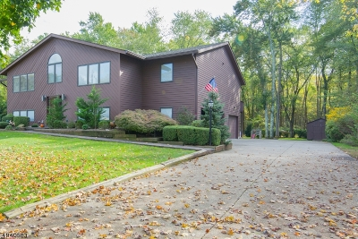 Morris Twp. Single Family Home For Sale: 8 Richlyn Ct