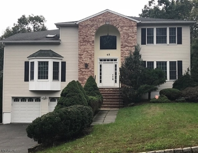 West Orange Twp. Single Family Home For Sale: 45 Lessing Rd