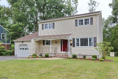 New Providence Boro Single Family Home For Sale: 22 Madison Ave