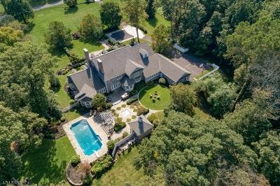 Far Hills Boro Single Family Home For Sale: 2 Sherwood Farm Rd
