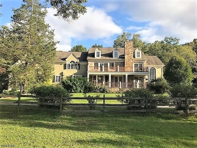 Far Hills Boro Single Family Home For Sale: 98 Spring Hollow Rd