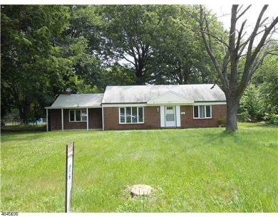 Edison Twp. Single Family Home For Sale: 3905 Park Ave