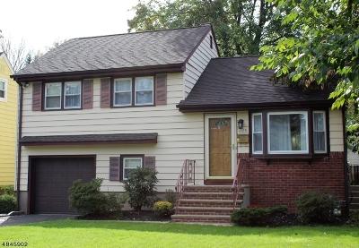 Scotch Plains Twp. Single Family Home For Sale: 226 Pinehurst Ave