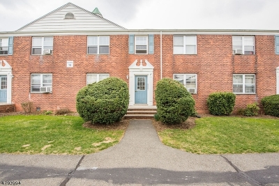 Bloomfield Twp. Condo/Townhouse For Sale: 935 Broad St Apt 49c #49C