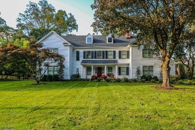 Bernards Twp. Single Family Home For Sale: 16 Monroe Pl