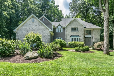 Randolph Twp. Single Family Home For Sale: 3 Canterbury Ct