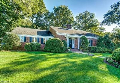 Millburn Twp. Single Family Home For Sale: 38 Richard Dr