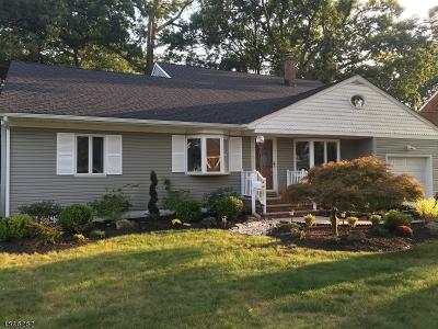 Garwood Boro Single Family Home For Sale: 235 Hickory Ave
