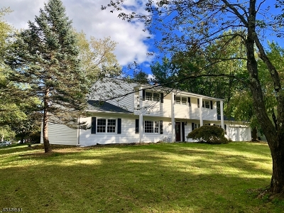 Parsippany-Troy Hills Twp. Single Family Home For Sale: 19 Woodbine Trl