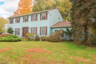Edison Twp. Single Family Home For Sale: 9 Jennifer Ct