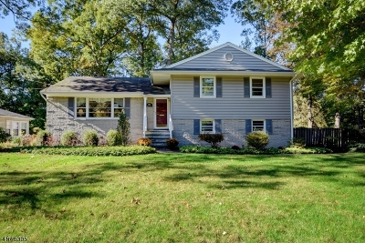 New Providence Boro Single Family Home For Sale: 198 Pittsford Way