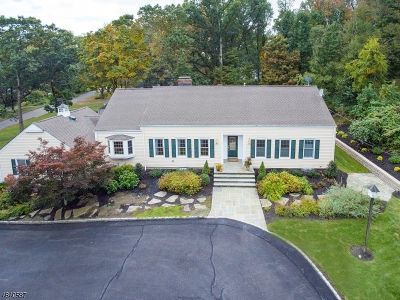 Morris Twp. Single Family Home For Sale: 12 Stonehenge Rd