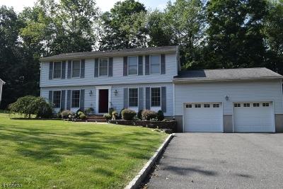 Randolph Twp. Single Family Home For Sale: 327 S Morris St