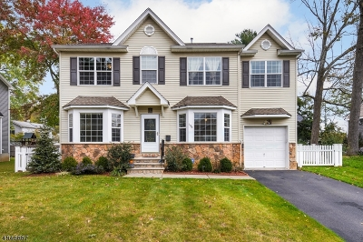 Parsippany-Troy Hills Twp. Single Family Home For Sale: 194 Hiawatha Blvd