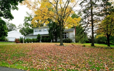 Livingston Twp. Single Family Home Active Under Contract: 2 Splitrock Rd