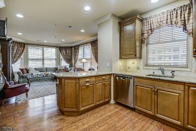 Livingston Twp. Condo/Townhouse For Sale: 1302 Pointe Gate Dr