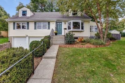 Morris Plains Boro Single Family Home For Sale: 34 Overlook Trl