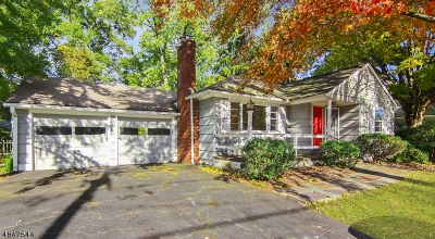 Montclair Twp. Single Family Home For Sale: 73 Alexander Ave
