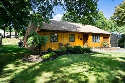 Livingston Twp. Single Family Home For Sale: 6 Spalding Dr