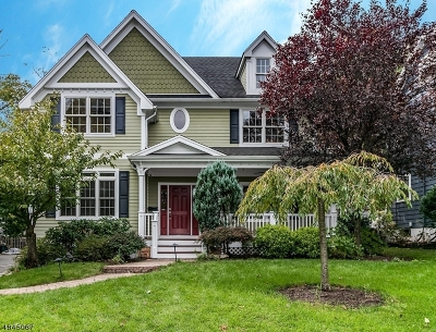 Westfield Town Single Family Home For Sale: 110 Nelson Place