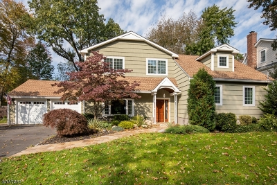 Chatham Twp. Single Family Home For Sale: 14 Gates Ave