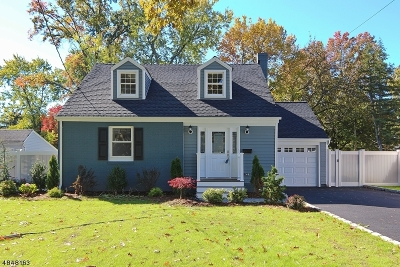 Westfield Town NJ Single Family Home For Sale: $599,900