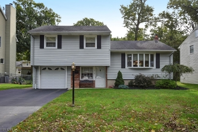 Scotch Plains Twp. Single Family Home For Sale: 2110 Meadow View Rd