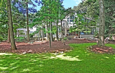 WATCHUNG Single Family Home For Sale: 525 Johnston Dr