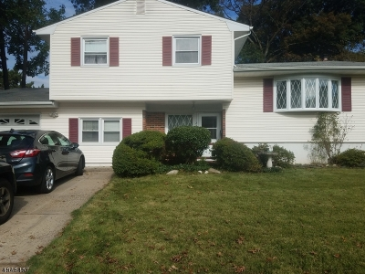 Edison Twp. Single Family Home For Sale: 24 S Locust Ave