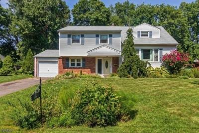 New Providence Boro Single Family Home For Sale: 39 Glenbrook Rd