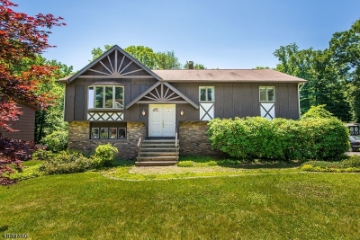 Randolph Twp. Single Family Home For Sale: 8 Alpine Dr