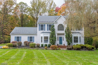 Randolph Twp. Single Family Home For Sale: 39 Bedminster Rd