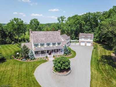 Bedminster Twp. Single Family Home For Sale: 1645 Lamington Rd