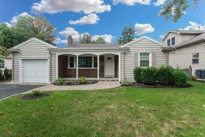 Springfield Twp. Single Family Home For Sale: 42 Pitt Rd