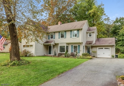 Parsippany-Troy Hills Twp. Single Family Home For Sale: 55 Redgate Rd