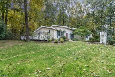 Randolph Twp. Single Family Home For Sale: 60 1 Morris Tpke