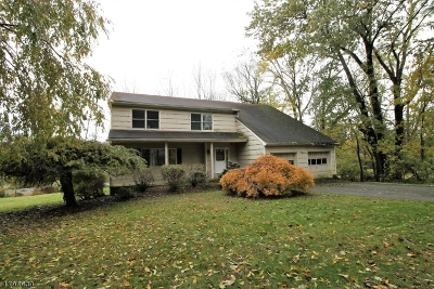 Randolph Twp. Single Family Home For Sale: 18 Sharon St