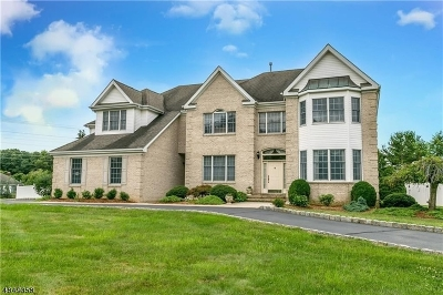 South Brunswick Twp. Single Family Home For Sale: 22 Ireland Brook Dr