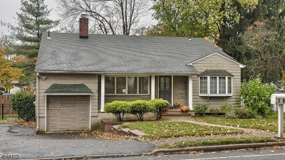 Westfield Town NJ Single Family Home For Sale: $599,000