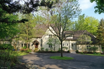 Bernardsville Boro Single Family Home For Sale: 170 Chapin Rd Ext.