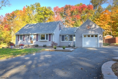 Parsippany-Troy Hills Twp. Single Family Home For Sale: 389 Halsey Rd