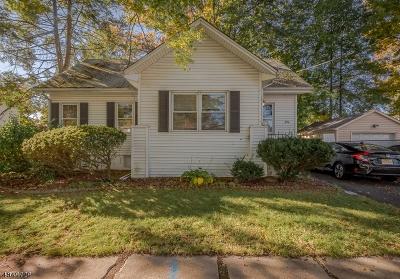 Roselle Boro Single Family Home For Sale: 406 Dermody St