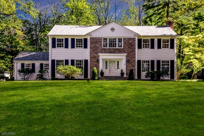 Millburn Twp. Single Family Home For Sale: 346 Long Hill Dr