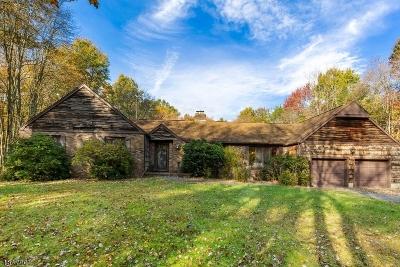 Bedminster Twp. Single Family Home For Sale: 91 Cowperthwaite Rd